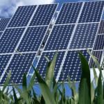 φωτοβολταϊκά σε γη υψηλής παραγωγικότητας