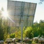 Παρέμβαση ΠΑΣΕΓΕΣ για τα φωτοβολταϊκά των αγροτών