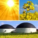 Επενδύσεις στην παραγωγή βιοκαυσίμων