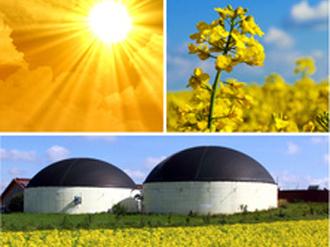13 energiaka fyta fot 330x248 Γερμανικό ενδιαφέρον για επενδύσεις στην ενέργεια