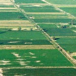 Στόχος 800 εκατ. έσοδα από τα αγροτεμάχια το 2014